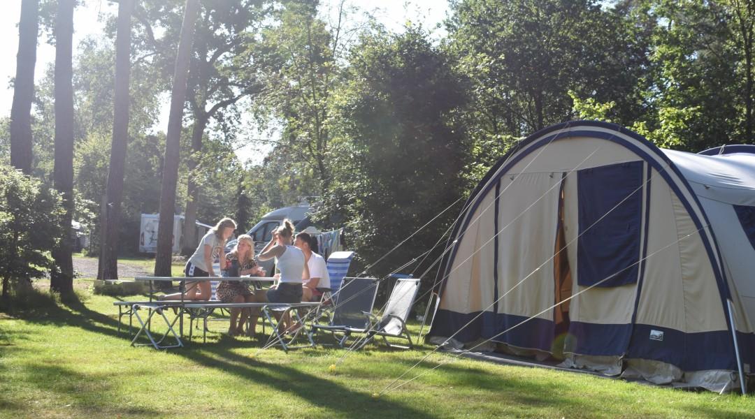 Foto van een kampeerplek, midden in de bosrijke omgeving.