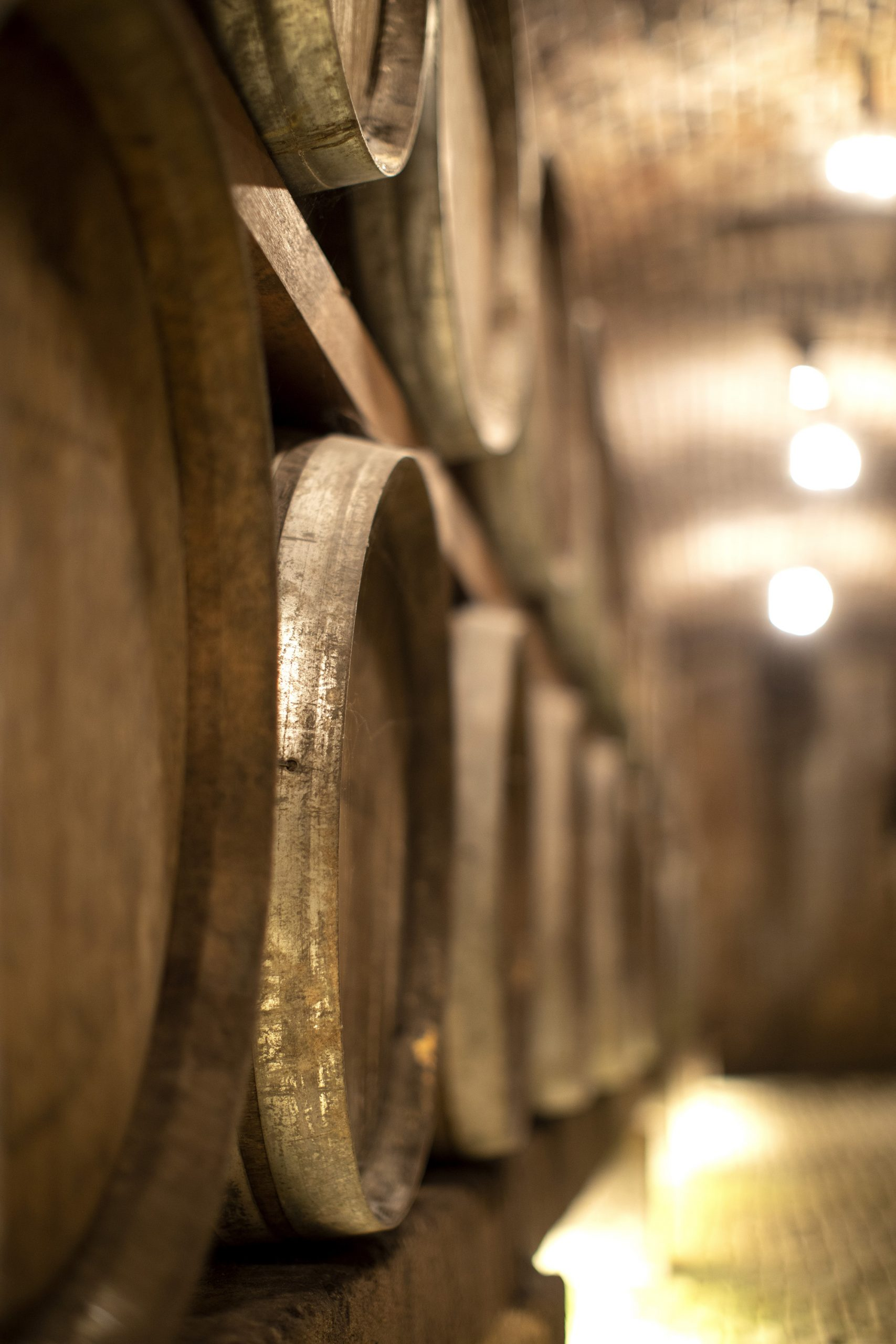 Wijnvaten in de kelders van Thiessen
